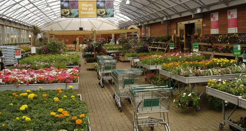 Within Dobbies Ayr Find Quality Plants Flowers Gardening