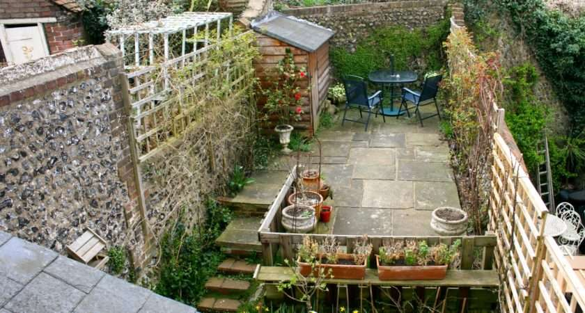 Wolfiewolfgang Small Lewes Town Garden Telling Get Grip