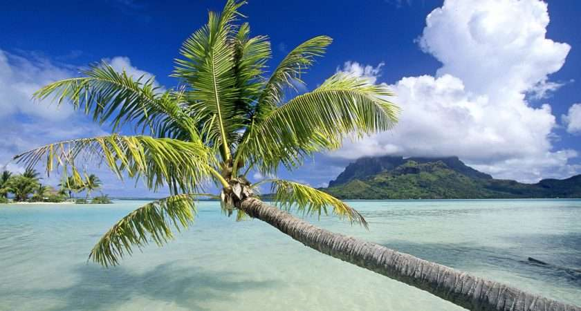 World Visits Tropical Island Germany Cool Photos